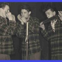 Bunter Abend: Das Moonlight-Trio mit Walter Hirt, Ernst Stemmer, Hans Geier.
