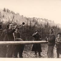 Narrenbaumholen in Hegne: Präsident Konti I. betrachtete den Baum.