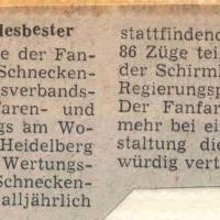Fanfarenzug Schneckenburg Landesbester.