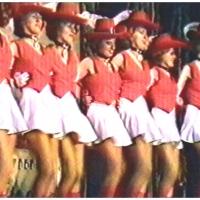 Narrenkonzerte im Konzil: Die Garde beim Auftritt.