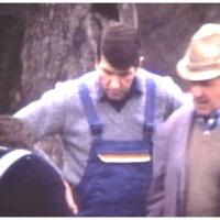 Betriebsleiter Walter Buck und Dieter Stöß beim Narrenbaumfällen auf dem Gottmannplatz