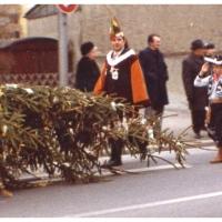 Schmutziger Donnerstag: Elfer Oskar Bürger bewacht die Spitze des Narrenbaumes beim Umzug durch Petershausen.