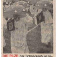 Jubiläums-Umzug der Giraffen in Wollmatingen: Die Schneckenburg im Pilzkostüm.