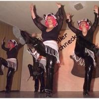 """11.11. in der Linde: The Boxer. Aufgeführt von der Tanzgruppe """"Just for fun"""" unter der Leitung von Ute Hofmeier."""