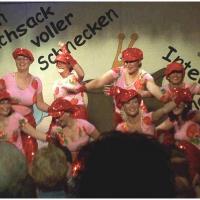 11.11. in der Linde: Es tanzten mit: Christine Degen, Sonja Lohrer, Marion Lohrer, Diana Heinemann, Anja Martini, Corina Götz und Tanja Traber.
