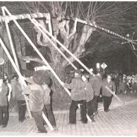 Narrenbaumstellen auf dem Gottmannplatz: Der Baum wurde wieder von den Holzern aus Allensbach gestellt.