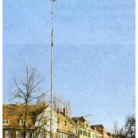 Narrenbaumfällen am Gottmannplatz: Noch stand der große Baum der Schneckenbürgler.