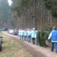 Narrenbaumholen in Hegne: Der kleinere Teil konnte getragen werden.