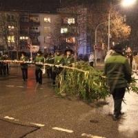 Narrenbaumstellen auf dem Gottmannplatz: Der Baum fuhr auf dem Platz ein.