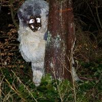 Schneeschreckerwachen in der Unikurve: Der Schneeschreck kommt aus dem Wald.