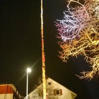 Narrenbaumstellen auf dem Gottmannplatz: Die Allensbacher Holzer stellten den Baum.