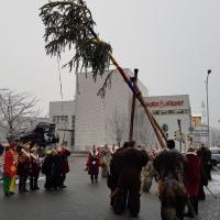 Schmutziger Donnerstag: Narrenbaumstellen vor dem Edeka.