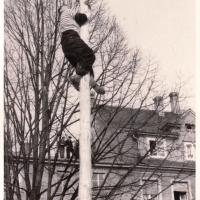 Schmutziger Donnerstag: Fritz Ehrler war wieder als erster auf dem Baum.