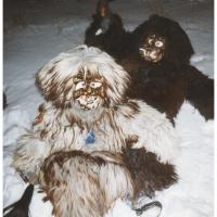 Nachtumzug in Dornstadt: Der Schneeschreck bei -19 Grad.