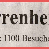Erste Fasnachtsball im Rheingold: Zeitungsartikel.