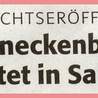 Schneeschreckerwachen in der Unikurve: Zeitungsartikel.