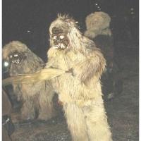 Der Schneeschreck beim Nachtumzug in Dornstadt. Tritt meisst in Gruppen auf.