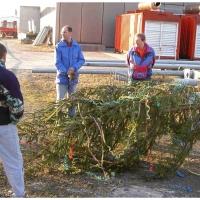Narrenbaumstellen auf dem Gottmannplatz: Der Baum wird vorbereitet.