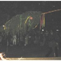 Narrenbaumstellen auf dem Gottmannplatz: Langsam hob sich der Baum.