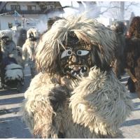 Umzug auf der Reichenau: Der Schneeschreck war dabei.