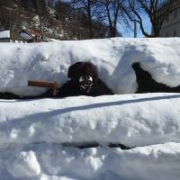 Fanfarenzug und Schneeschreck fuhren nach St Blasien zum Umzug.