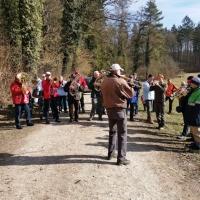 Narrenbaum holen in Hegne: Dazu spielte die Clowngruppe unter der Leitung von Gerd Zachenbacher.
