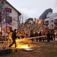 Narrenbaum Stellen auf dem Gottmannplatz: Er wurde traditionell von den Allensbacher Holzern gestellt.
