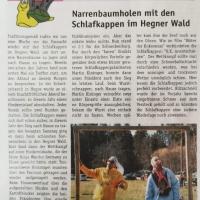 NARREN-ZEITUNG Hegau Bodensee 2020